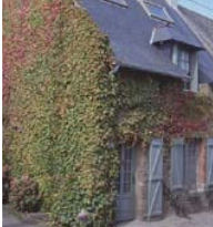 Location - Maison 5 Personnes Cancale - Cancale - Bretagne - France