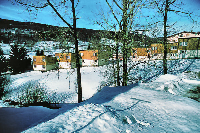 location chalet ski vacaf